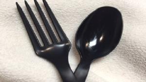 fork_Spoon