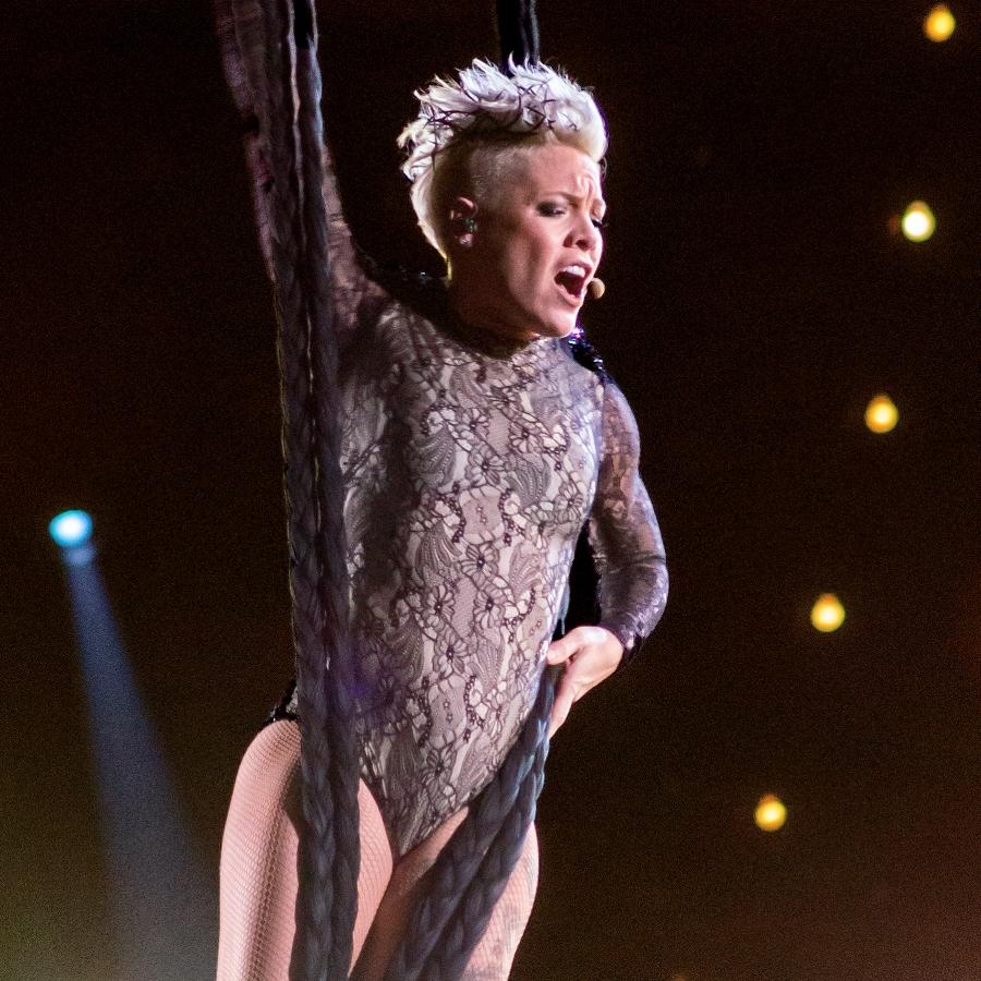 Pink_Grammys_2014_(cropped).jpg